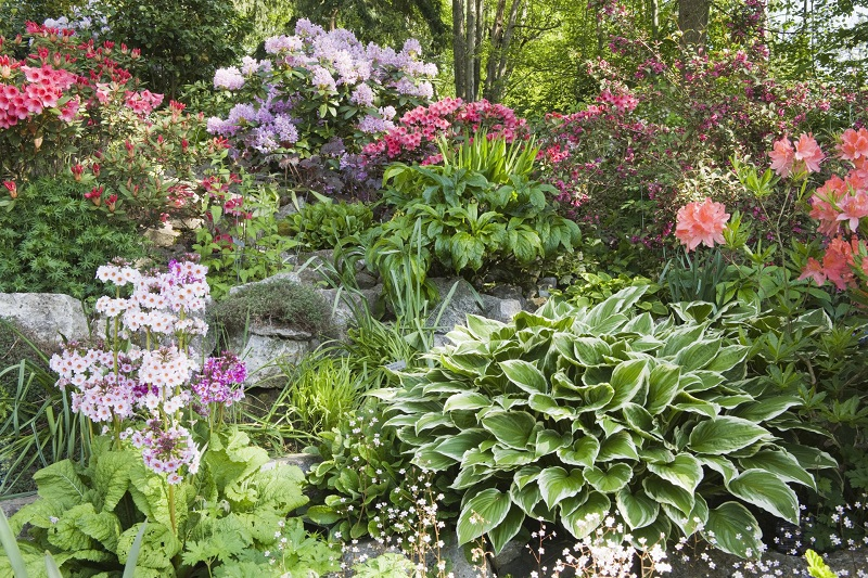 The Flower Garden Design That You Will Like